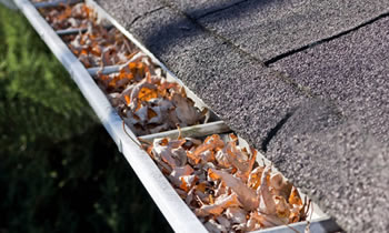 gutter cleaning Nashville